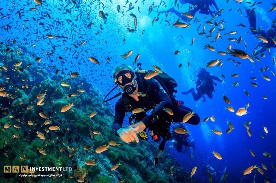 تجربه بی نظیر غواصی در آب های قبرس